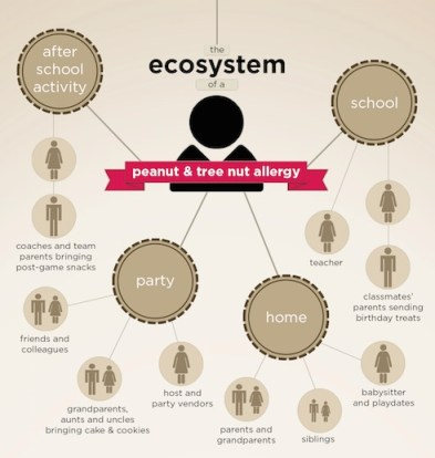 Rich's Infographic: Ecosystem of a Peanut and Nut Allergy