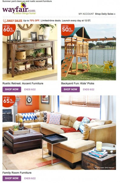 Wayfair Daily Sales Email Example