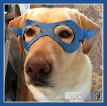 Oliver the Dog Wearing a Mask ©TechSavvyMama.com