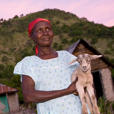Heifer International REACH program in Haiti