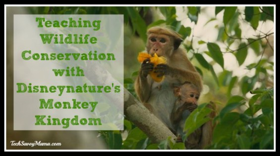 Teaching Wildlife Conservation with Disneynature's Monkey Kingdom