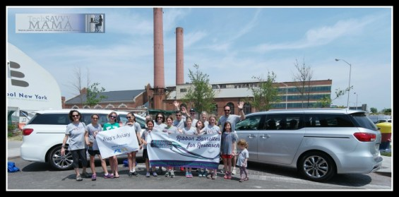 Ava's Aviary with Kia Sedona Vans at 2015 Great Strides Walk Benefitting the Cystic Fibrosis Foundation