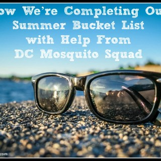 How We're Completing Our Summer Bucket List with Help From DC Mosquito Squad