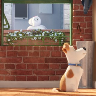 5 Steps to Having a Fun Family Movie Night with The Secret Life of Pets (w giveaway!)