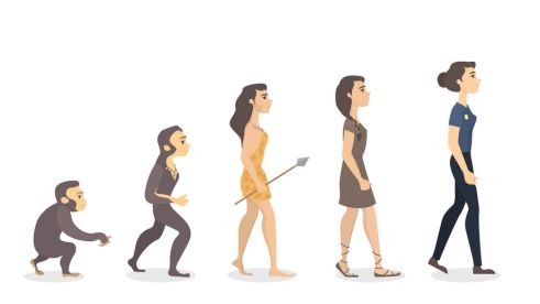 Image result for women evolve
