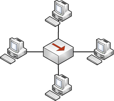 Network Topology: Types of Network Topology and Their Advantages and Disadvantages