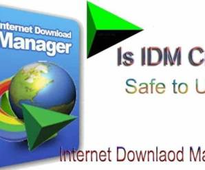 Crack Internet Download Manager (IDM) 6.35 build 1