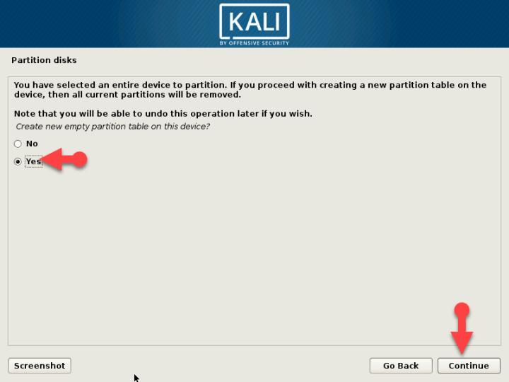 Kali Linux partition