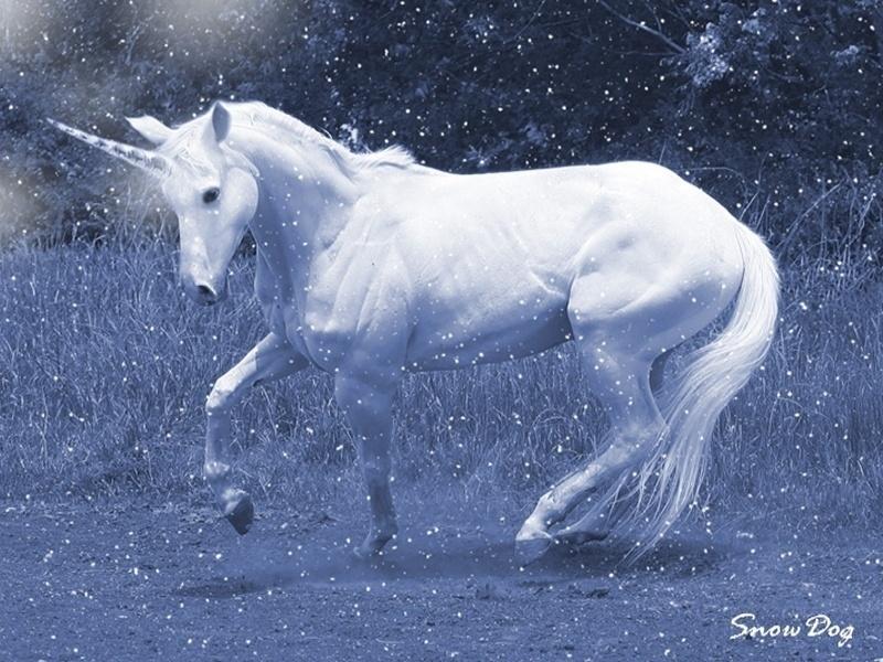 Snow-Unicorn-unicorns