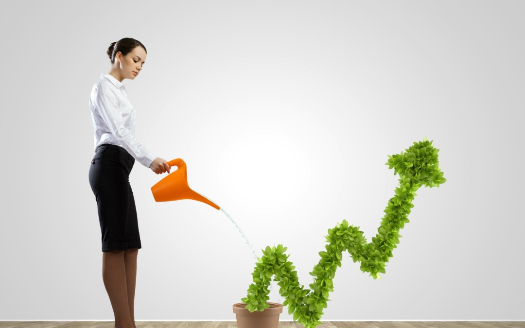 how to start a startup growth