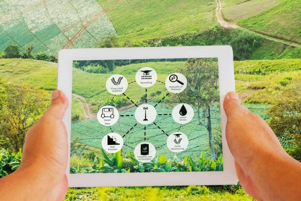 Is India Ready for Full-Scale Agri-Entrepreneurship? - TechStory