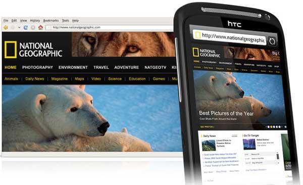 HTC Desire S, web browsing