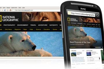 HTC Desire S, web browsing