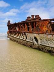 Fraser-Island-Maheno-shipwreck-barnacles2