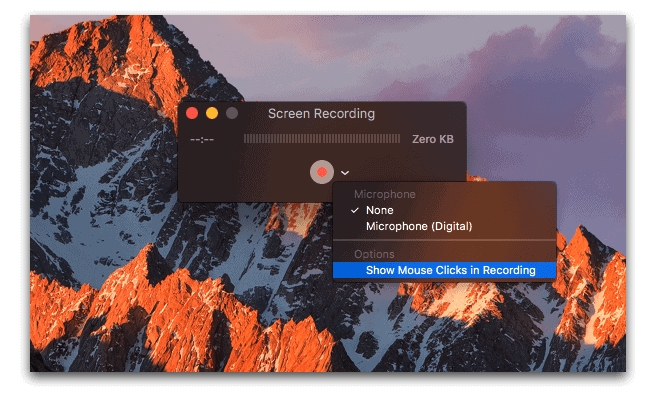 Screen Recording and Microphone