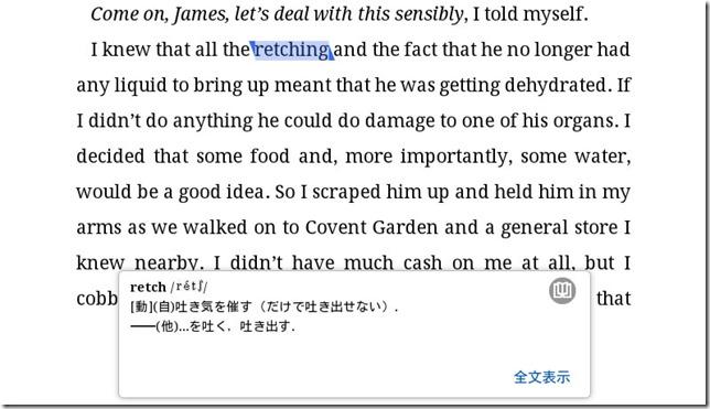 Kindle_Translation