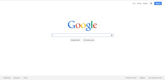 Google Search Interface