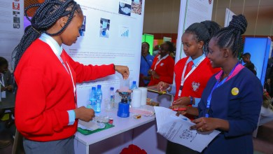 Photo of Young Scientists Kenya National Science and Technology Exhibition kicks off at KICC