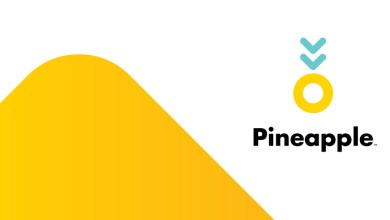 Photo of South Africa's insurtech startup Pineapple accepted into US Insurance accelerator