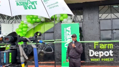 Photo of Safaricom says its mobile agriculture platform DigiFarm will outgrow M-PESA five years