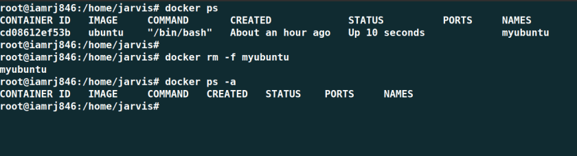 Remove Docker Container Forcefully