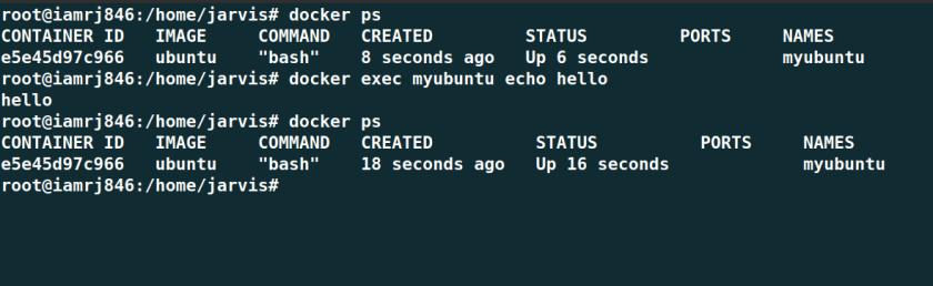 Docker Run Vs Docker Exec