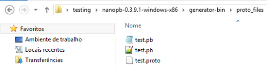 Files generated after proto file compilation