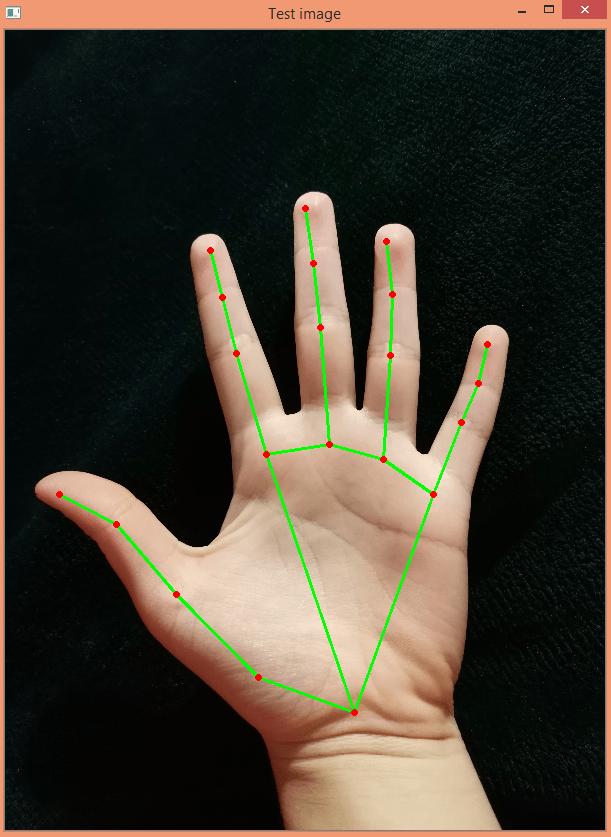 Hand landmarks detected on image.