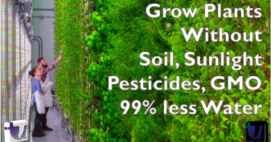 grow plants without soil sunlight pesticides GMO 99% less water - Grow Plants without Soil, Sunlight, Fertilizers and GMO
