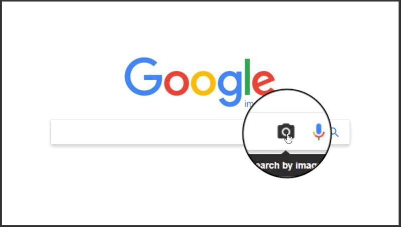 Google Search by Image Pic - Tech Urdu
