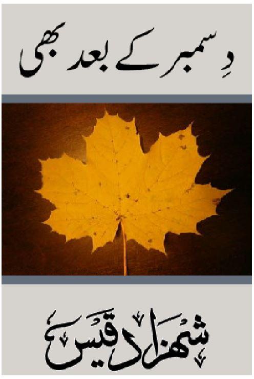 December Kay Baad Bhi by Shehzad Qais