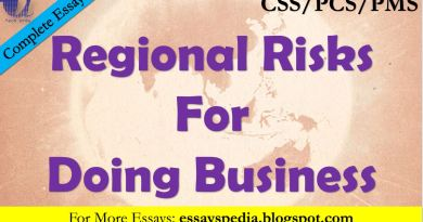 Regional Risks for Doing Business - The Case of Pakistan | Complete Essay with Outline - Tech Urdu Essayspedia