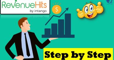 Today we are going to talk about RevenueHits which is a great ad network for small publishers with no minimum traffic required - techurdu.net