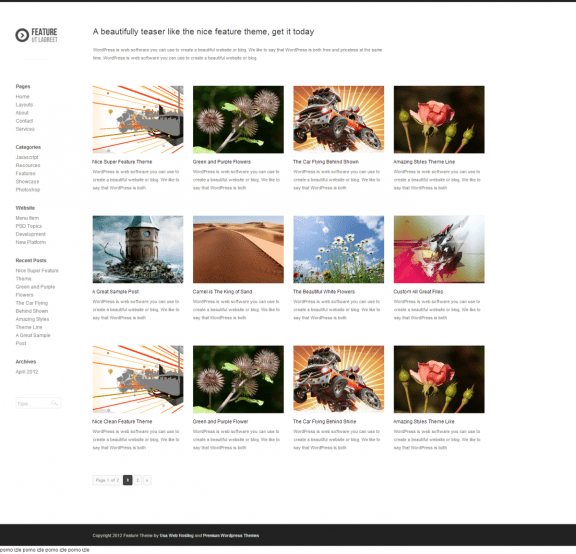Feature Premium WordPress Theme
