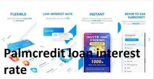 Palmcredit loan interest rate
