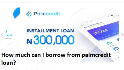 How much can I borrow from palmcredit loan?