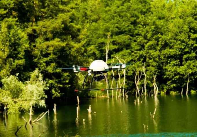 Drone Wildlife monitoring