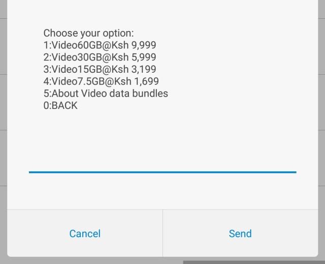 Video Data Bundles
