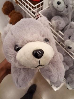teddy bear shot Lava Z81