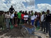 Tree planting at Konza