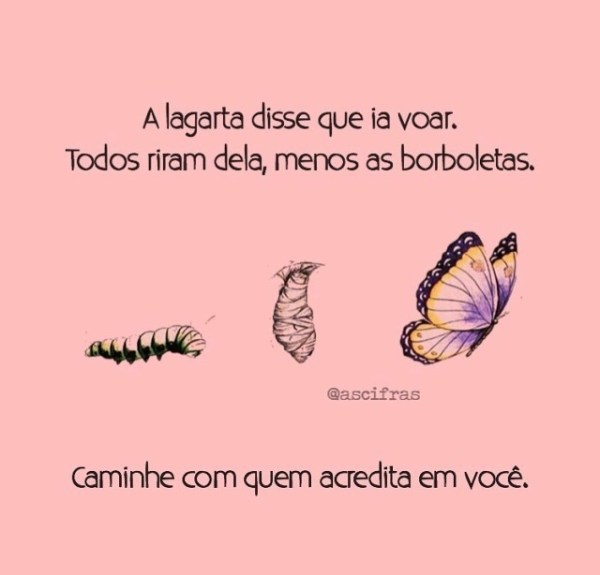 A lagarta disse que ia voar. Todos riram dela, menos as borboletas... caminhe com quem acredita em você. whatsapp