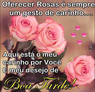 Lindas rosas de boa tarde!