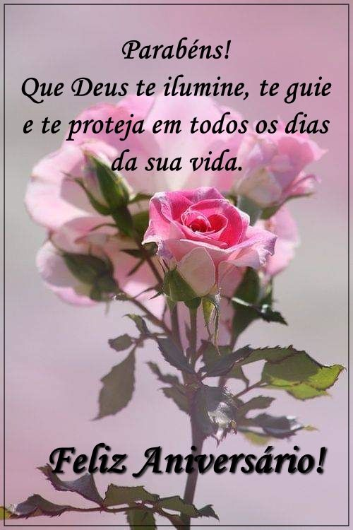 Parabéns com uma rosa