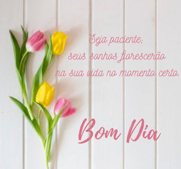 Mensagens com flores