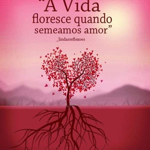 Quando semeamos amor
