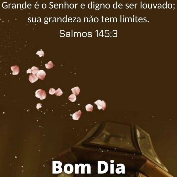 Salmos 145:3