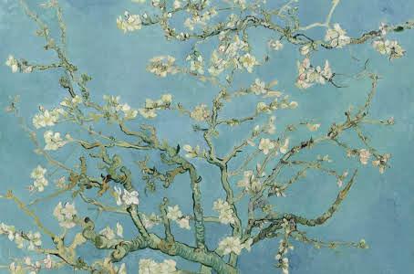 Amendoeira em Flor de Van Gogh
