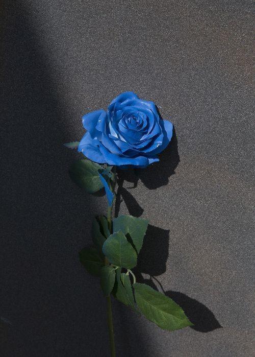 mais lindo azul