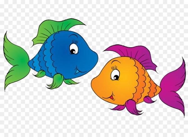 Que dois peixinhos coloridos.