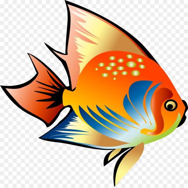 Peixinho colorido fofo.